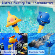 Spas Water Thermometer Hydrothermograph Swimming Thermograph Pool Accessories
