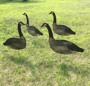 Vintage Set Of 4 Carry-lite Waxed Cardboard Folding Goose Decoys W/ Stakes Geese