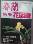 And039out Of Printand039 Japanese Collectors Bookthe Flower Book Of Cymbidium Goeringiia