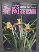 And039out Of Printand039 Japanese Collectors Bookthe Flower Book Of Cymbidium Goeringiib