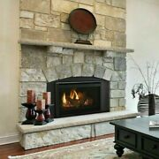 Majestic Ruby 25 Small Propane Gas Insert Fireplace Ruby25il W Remote And Blower