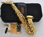 Taishan 5000 Model Alto Sax Gold Saxophone Germany Mouth With Case