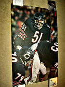 No Fold And Full Size 1970 Dick Butkus Sports Illustrated Si Poster Bears Nfl