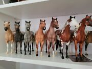 Breyer Traditional Lady Phase Conga Including Hope N Glory Sprinkles And More