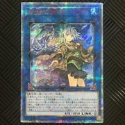 Price Reduction For A Limited Time During The Campaign Period Yugioh Area 20th
