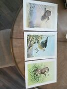 Lot Of 3 Ned Smith Prints Pa Game Commission 1975