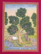Tree Of Life Finest Detailed Miniature Painting Rare Exquisite Art Work Bible