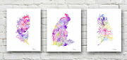 Peacock Art Set Of 3 Abstract Watercolor Paintings Prints By Artist Dj Rogers