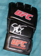 Cm Punk Signed Autograph Rare Official New Ufc Black Leather Glove With Coa Wwe