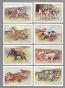 Cigarette Cards.player Tobacco. Dogs.scenic.xl. Complete Set Of 12. 1924