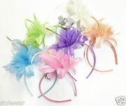 Christmas Ladies Beach Hen Party Pastel Feather Flower Fascinator Alice Band