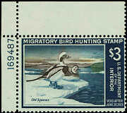 Rw34 Plate 196487 1967 3 Old Squaw Ducks Duck Stamp Mint-og/nh