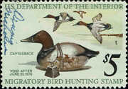 Rw42 1975 5 Canvasbacks Ducks And Decoy Duck Stamp Used-xf--small Signature