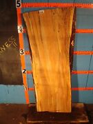 9281  2 1/2 Thick Black Line Spalted Maple Live Edge Slab