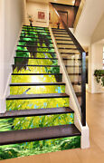 3d Sunlight Forest Cave Risers Decoration Photo Mural Vinyl Decal Wallpaper Us12