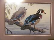 Ron Jenkins Original Wood Duck Acrylic 2011 Federal Duck Contest Rn0dss