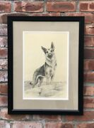 C1940andrsquos Original Signed Drawing Of German Shepherd Dog By Marguerite Kirmse