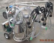 Oil-free Vacuum Pump Milker For Cows + Goats Double Tank Brand New Xc