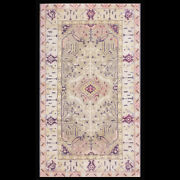 Antique Cotton Agra Rug 4and039 X6and039
