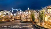 Bubble Tent Garden Igloo Plant Geodesic Dome Walk In Gazebo Party Greenhouse New