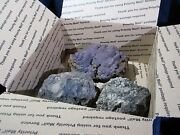Dinosaur Coprolite Fossilized Dung From Wyoming - Jewelry Grade - Bulk Pack