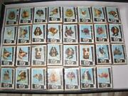 Antique Old Authentic Matches Box Dogs Drava Set Collection 1960s Years 31 Pcs