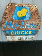 Vintage Rare Hy-line Feeds Chick Sign Farm Country Gas Oil Soda Cola 36 X 33