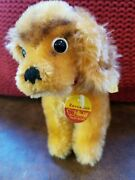 Vintage Steiff Mohair Revue Susi Cocker Spaniel Dog Chest And Ear Pin Tag 4300/12