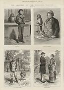 1881 Zoo Caricatures Dog Seal Parrot Sheep
