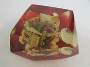 Paperweight And Pen Holder Alpha Portugal Red Shells Fish Ocean Beach Nautical
