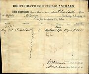 1861 Confederate Document 1st Tennessee Battalion Cavalry, Mcnary's Cavalry
