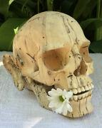 Real Human Size Carved Wooden Skull Flexible Jaws Sculpture With Ears Oddities