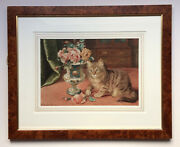 Wilson Hepple 1853-1937 Original Signed And Dated Watercolour Kitten With Roses