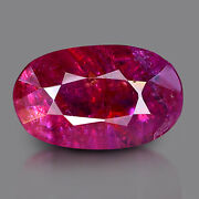 2.24 Ct Lab Certified Burmese Ruby Unheated Natural Oval Gemstone