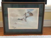 Rare Chas E. Murphy Signed Artist Proof Mallards With Remark And Embossed Chop