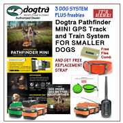 Dogtra Pathfinder Mini /3 E-collars + 2 Free Straps, Flea Comb And Water Bowl