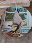 Waiting By Zoe Stokes American Artists Cat Collector Plate 1982