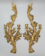 Pair Large Vintage Italian Carved Giltwood Candle Sconces