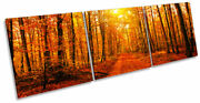 Orange Forest Trees Sunset Print Canvas Wall Art Triple Picture