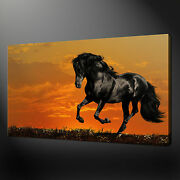 Black Horse Landscape Canvas Print Picture Wall Art Home Decor Free Delivery