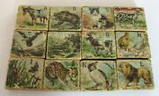 Antique Childand039s Wooden Alphabet Blocks With Lithographic Animals Complete Set