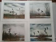 David Hagerbaumer Portfolio Of Waterfowl 4 Remarque Prints Extremely Rare 1967