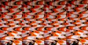 Large Tent Packed Optical Mt.4 80x2 70 Vintage Years 70 Fabric