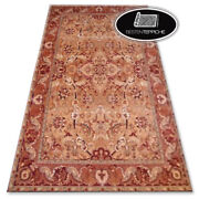 Traditional Agnella Carpet And039agnus And039orange Fashionable Designs Best Quality
