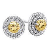 2.5 Ct Golden Genuine Moissanite Micropave Halo Stud Earrings In 10k White Gold