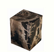 Petrified Wood Stool Accent Table 8