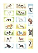 Cigarette/trade/cards. Cadet Sweets.dogs 1st Series.complete Set Of 25.1958.