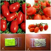 Dwarf Tomato And039and039roma Vfand039and039 250 Top Quality Seeds - Bulk - Extra Productive - Rare