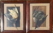 Pair Of Antique Alexander Popejr Still Life Hunting Dead Game Chromolithographs