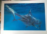 Stanley Meltzoff Blue Marlin And Wahoo Signed 1986 27 X 18 Sportsmanand039s Edge